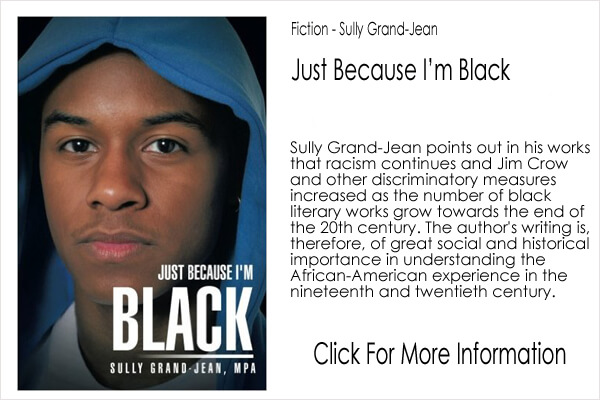 Fiction - Sully Grand Jean - Just Because I'm Black